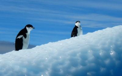La Antártida y el Cambio Climático. Conferencia Gratuita
