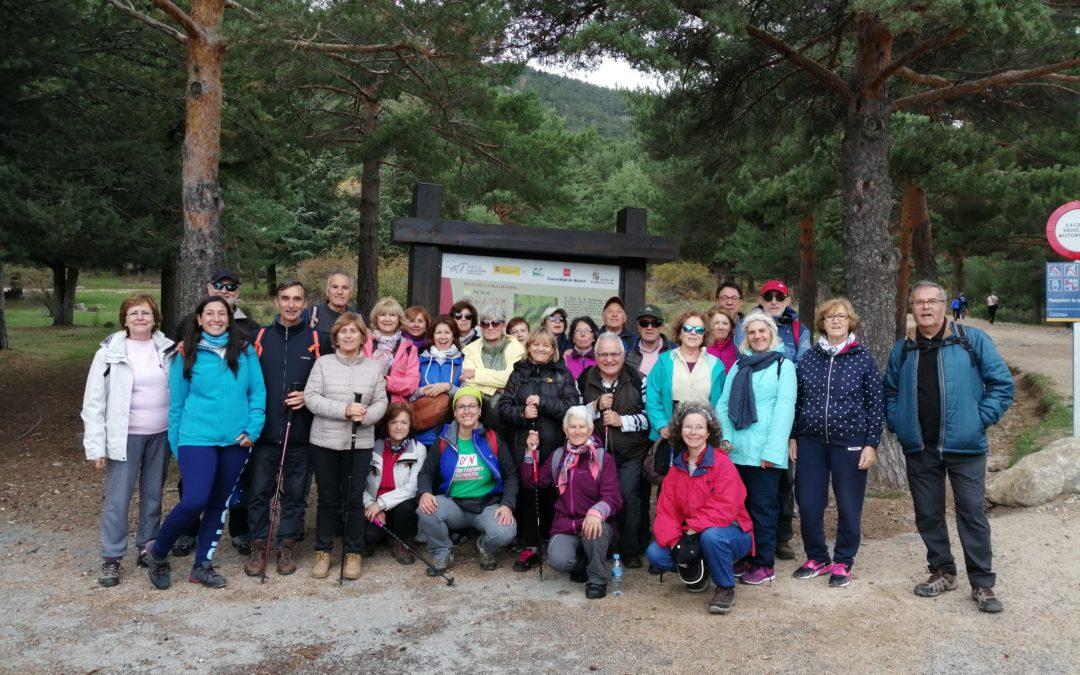 Senda Ecológica con el Grupo Senior del Ayto Las Rozas