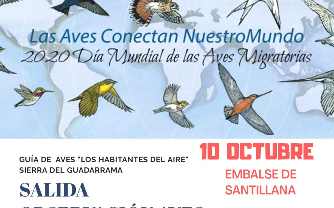 Dia de las Aves. Salida Ornitológica