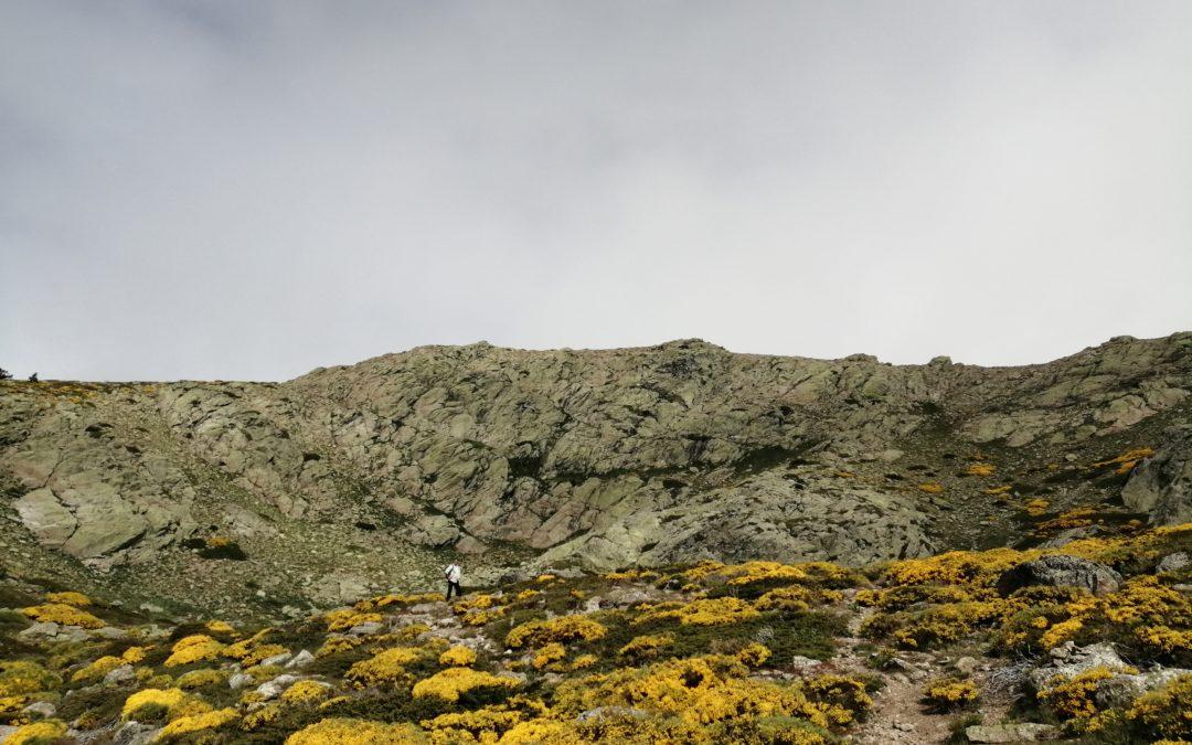 Ruta Montaña. Lágrimas y Pico del Nevero