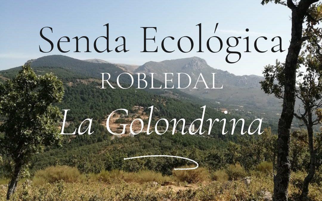 Senda Ecológica. Conociendo el Robledal de La Golondrinaa